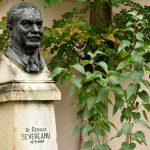 Muzeul George Seevereanu
