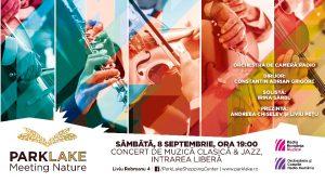 Afis Concert ParkLake
